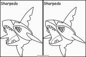 Pokemon65