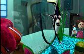 Find Nemo
