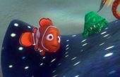 Buscando a Nemo