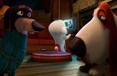 Boog & Elliot - vilde venner